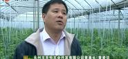 品读永州之设施农业快乐农庄(上)