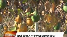 20181219祁阳新闻