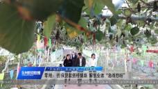 20191120永州新聞聯播