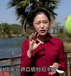 《每日农经》永州之野橘香世界
