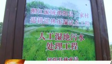 20190611祁阳新闻