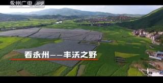 【重磅推薦】看永州:豐沃之野