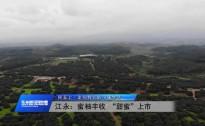 20200925永州新闻联播