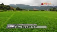 20210523永州新聞聯播