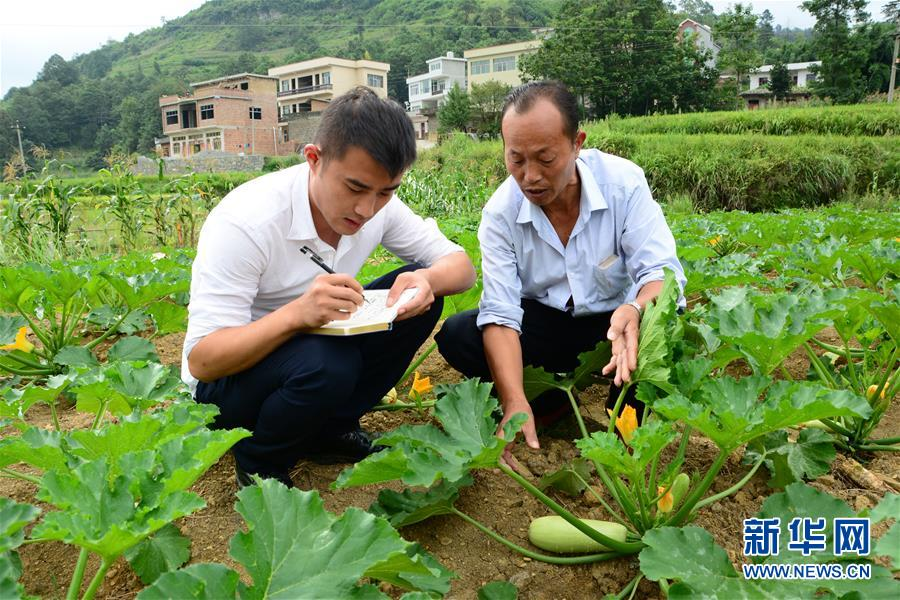 (新华全媒头条·图文互动)(3)咱们村里的年轻人——记奋战在贵州脱贫攻坚一线的青年