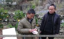 江永:村民喜領退還違紀款