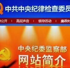 中纪委:让红脸出汗成常态是对党员最大爱护
