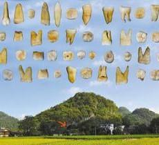 """永州或是中国乃至整个东亚现代人的""""伊甸园"""""""