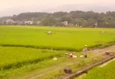 2019年中国农民丰收节湖南主题活动永州东安分会场宣传片