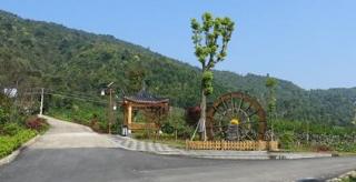 """回龍圩:特色新農村建設的""""八仙洞樣本"""""""