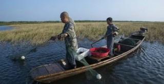 湖湘地理|关于大通湖的故事,不仅仅是大闸蟹