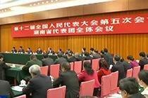 王岐山在參加湖南代表團審議