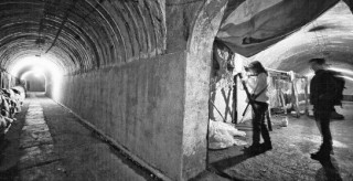 湖湘地理丨黃鼠狼睡覺的地下1米世界,是最熱鬧的區間