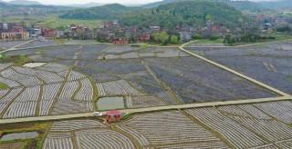 永州這些村落入選第五批中國傳統村落 有你家鄉嗎