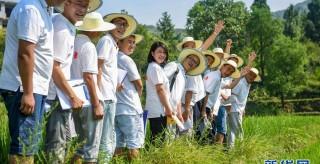 咱们村里的年轻人——记奋战在贵州脱贫攻坚一线的青年