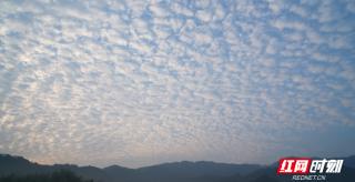 """通道""""奇怪云"""":是魚遨游天空 翻出層層鱗片"""