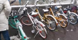 又一共享單車漲價!免費騎、1元騎或已一去不復返