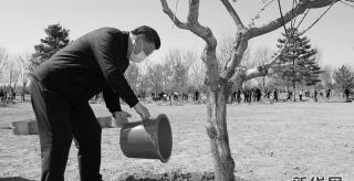 習近平參加首都義務植樹活動
