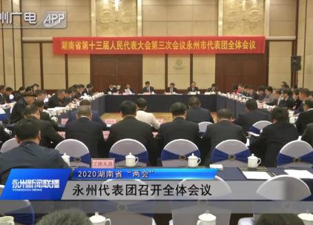 """(2020湖南省""""两会)永州代表团召开全体会议"""