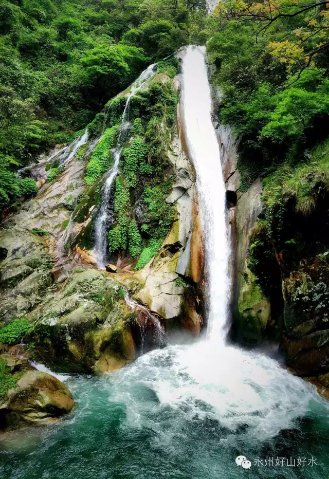 壁纸 风景 旅游 瀑布 山水 桌面 640_932 竖版 竖屏 手机