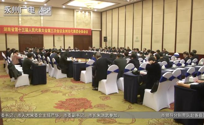 """(2020湖南""""两会"""")永州代表团审查省人大常委会、省""""两院""""工作报告"""