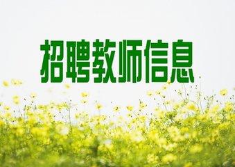 永州市新田县第二次招聘教师公告