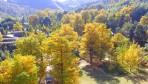 桐子坳-秋天的童話