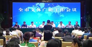 谢景林:加大文化产业建设打造文化品牌