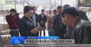 李晖参加市委办机关一支部主题党日活动