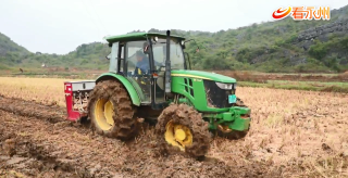江華:政府免費供種 8萬畝冬閑田種上油菜